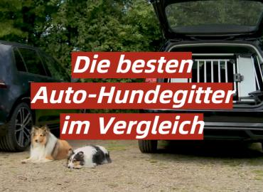 Die besten Auto-Hundegitter im Vergleich
